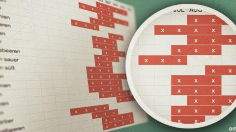 saison kalender