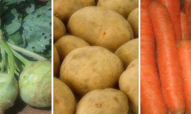 Kohlrabi-Kartoffel-Möhren Eintopf – in 20 min fertig!