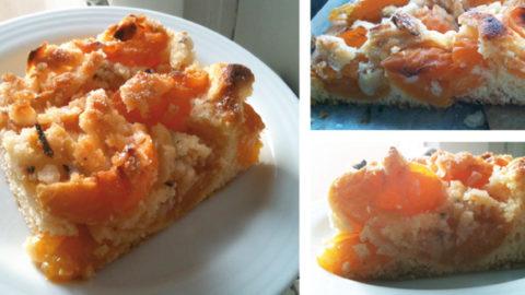 aprikosenkuchen