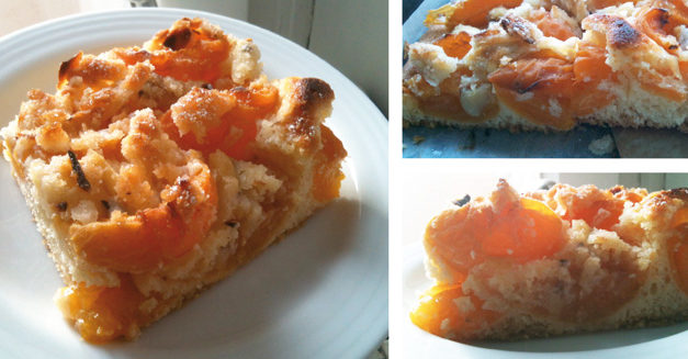 Aprikosenkuchen mit knusprigen Mandelstreuseln