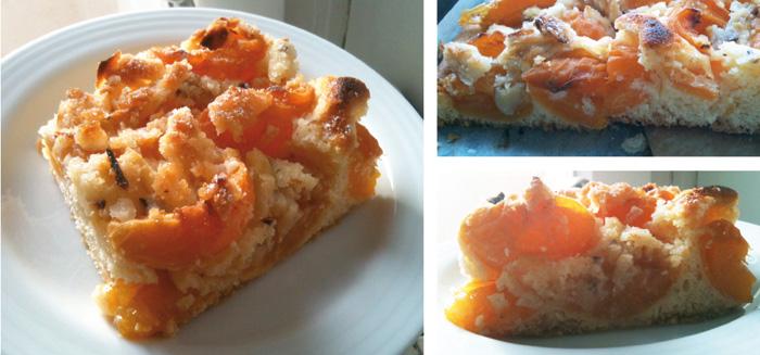 aprikosenkuchen2 - Pflaumen-Crumble mit Walnuss-Streuseln