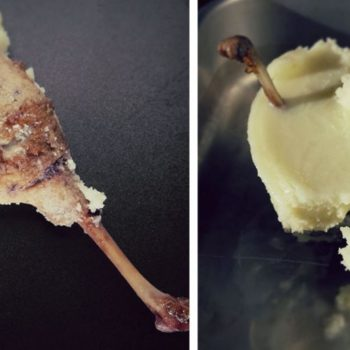 confierte entenkeule1 350x350 - Schweinebraten mit Kruste in Biersoße