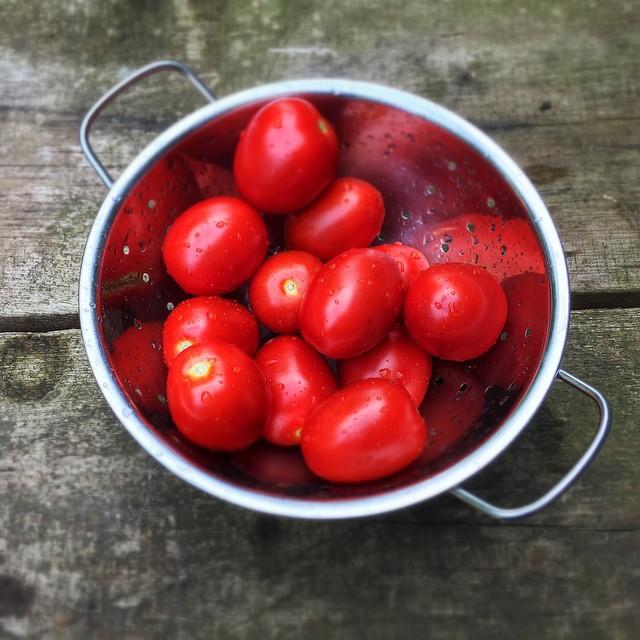 Heute gibts Tomatensauce aus Tomaten  mehr ist nicht drinhellip