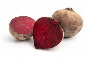 Rote Beete Knolle