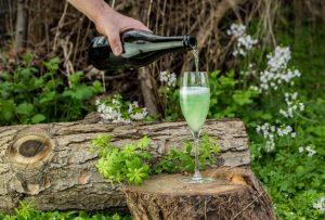 Gin Cocktail - Waldmeister Cocktail