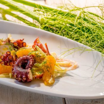 pulpo sommer salat 1 350x350 - Chicorée Salat mit Steinpilz Vinaigrette