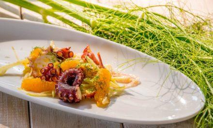 Sommersalat mit Pulpo und Fenchel