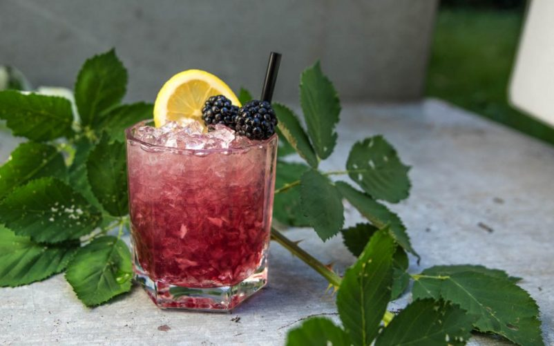 Gin Cocktail Bramble 802x501 - Bramble Gin Cocktail – Anti-Aging dank Brombeere