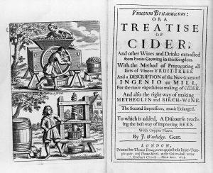Vinetum Britannicum 300x244 - The Irish Champ – irisch inspirierter Gin Cocktail mit Apfelaroma und Mandelnoten