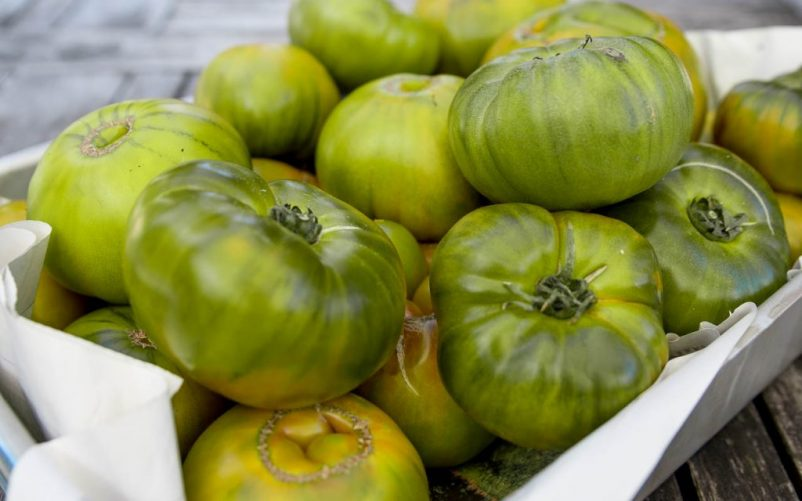 gruene tomaten 802x501 - Grüne Tomaten Suppe mit Basilikum-Schaum