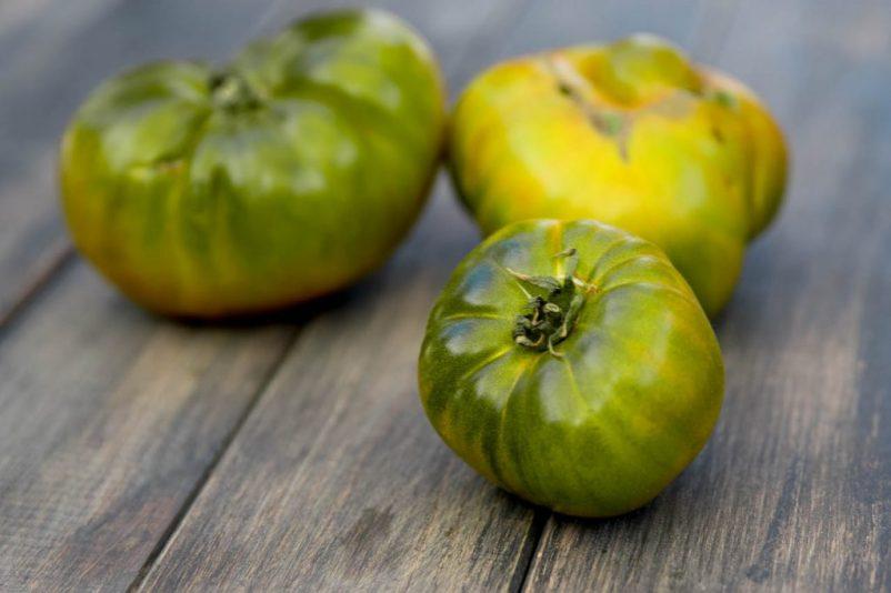 gruene tomaten ochsenherz 802x534 - Tomatentarte  mit Ziegenfrischkäse
