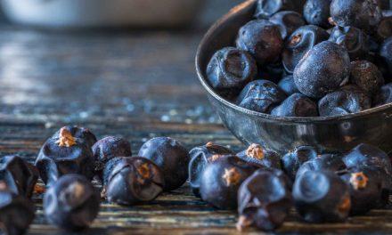 Gin deine Botanicals – Je mehr desto besser?