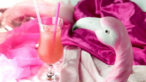 Pink Flamingo Floyd 480x270 - Pink Flamingo Floyd  – trendiger Gin Cocktail, nicht nur für Mädchen