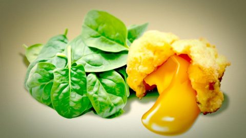 Fritiertes Eigelb mit Spinat