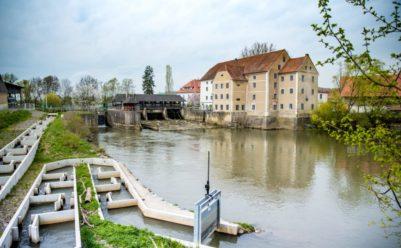 kuerbiskern oel 10 1 401x248 - Ein kulinarischer Spaziergang durch die südöstliche Steiermark