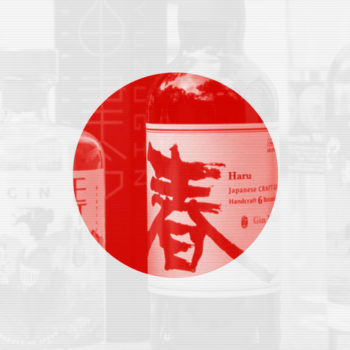 japan gin 8 350x350 - Die CAMY-GIN-Skala