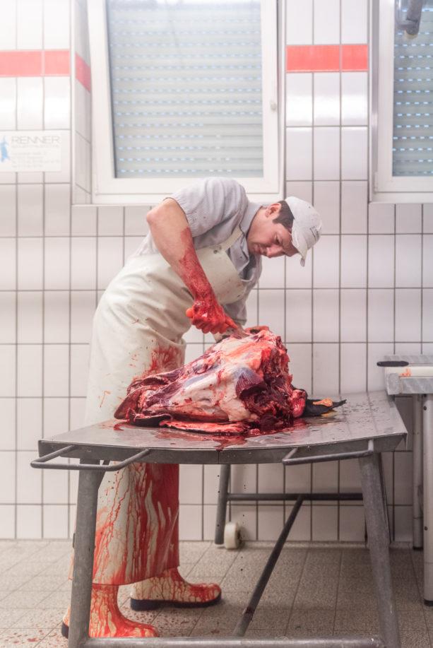 190911 wagyu schlachtung 2109 613x917 - Ein Rind wird geschlachtet