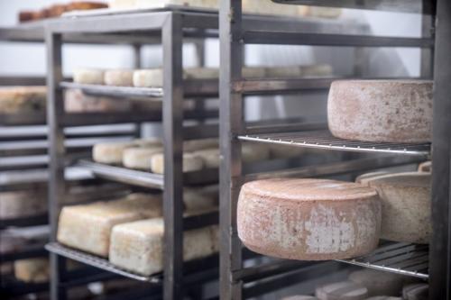 Käse in der Fromagerie zu Riegersburg in der südöstlichen Steiermark
